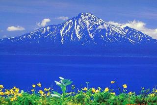 北海道旅行情報_利尻・礼文町の情報_悠悠北海道