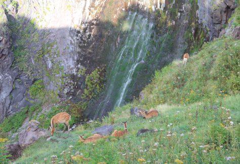 フレペの滝 ホロホロと流れ落ちるさまが涙に似ていることから、地元では「乙女の涙」という愛称で親しまれています。