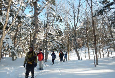 冬の知床五湖は認定されたガイドツアー(有料)による限定利用です。