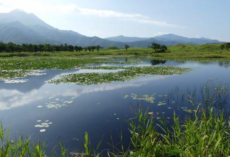 知床五湖 知床連山を背景に原生林の中にたたずむ5つの神秘的な湖。